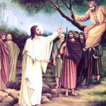 Роздуми на неділю Закхея