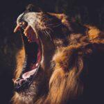 Не біймося сатану, але й не ігноруймо його