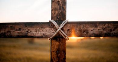 Божі Завіти – цеглини у справі нашого спасіння.