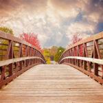 """Притча: """"На мості"""""""